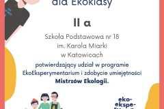 Dyplom-2a