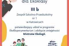 Dyplom_3b-11