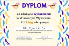 instaling-FZ